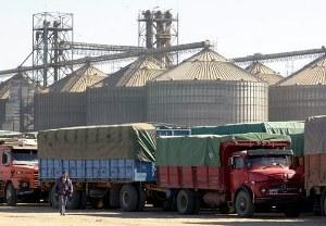 Los camiones que transportan los granos.
