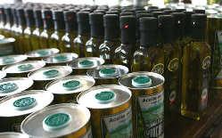 Yancanelo, aceite de oliva extra virgen