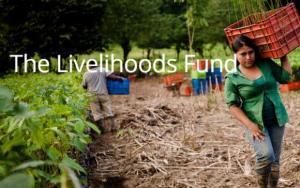 Livelihoods, un proyecto de Danone y Mars