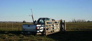 Las ventas de camionetas agropecuarias sobreviven.
