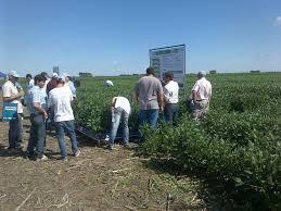 Una importante cantidad de productores se dieron cita en un campo de Entre Ríos.
