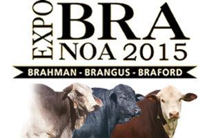 Es organizada por las Asociaciones de Brahman, Braford y Brangus.