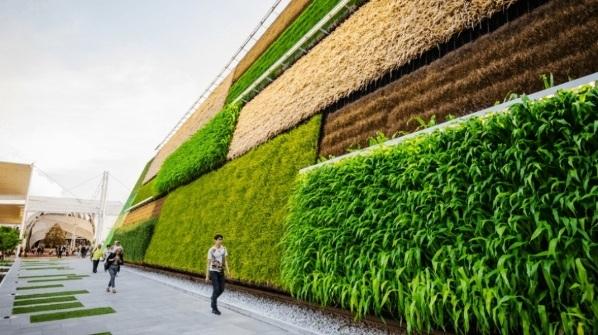 Empresas sustentables