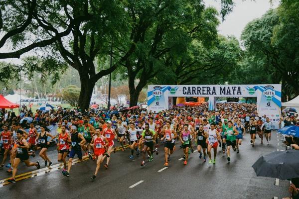 Carrera Maya Jumbo