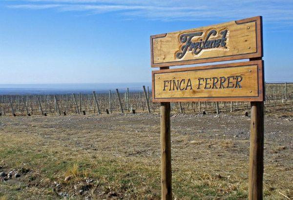 Finca Ferrer