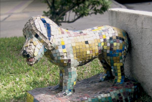 Fernando, el perro callejero