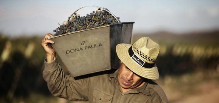 Bodega Doña Paula