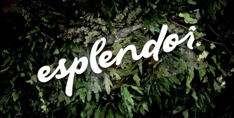 Esplendor by Wyndham