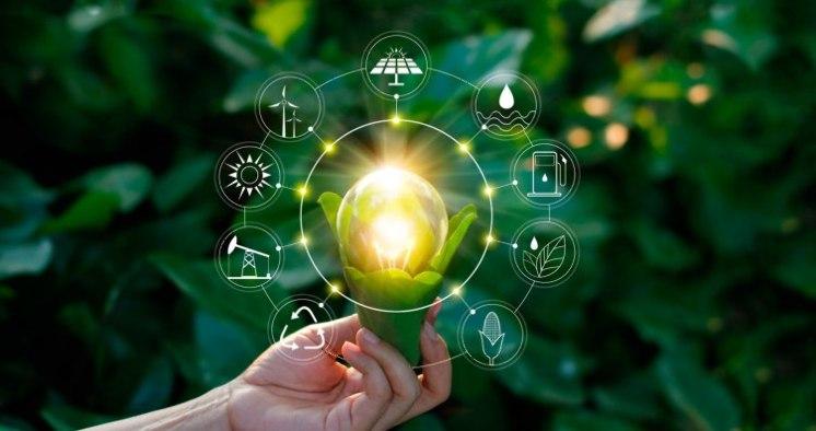 Compañías y sustentabilidad